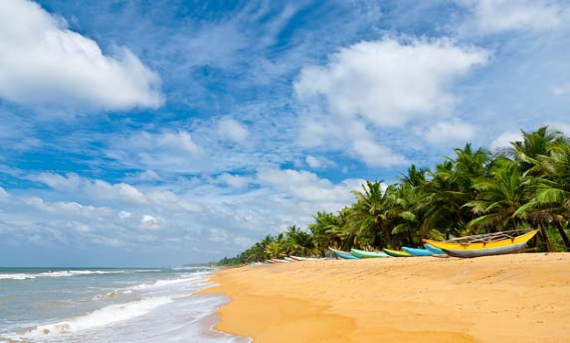 Image result for bask under the sun on the pristine beaches kerala