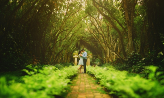 Kerala Is Undoubtedly Among The Top Honeymoon Destinations In India Each Year Season After Couples Start Their Blissful Life Amidst Some